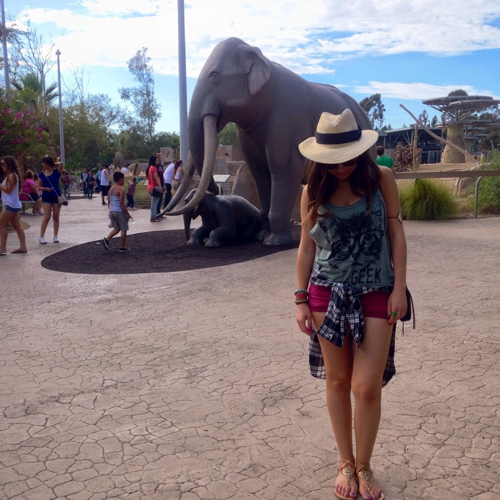 Blogger Nihan posing with Elephants and showing her outfit at the San Diego Zoo
