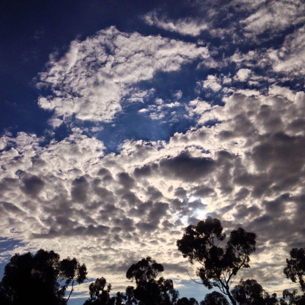 Gorgeous clouds at the San Diego Zoo