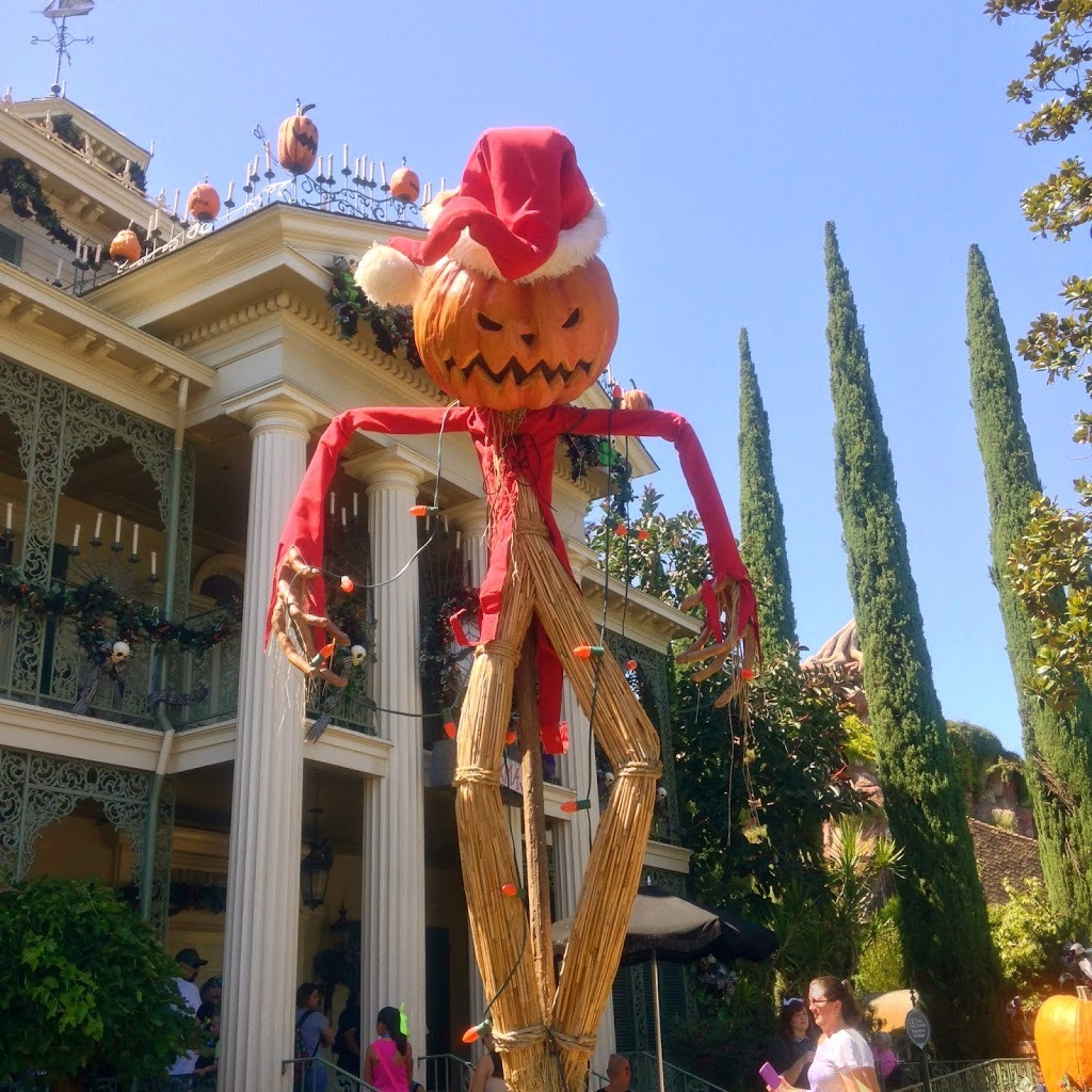 The 12 foot high Jack-O-Lantern right in front of Haunted Mansion decorated for Halloween for Disneyland Halloween Time