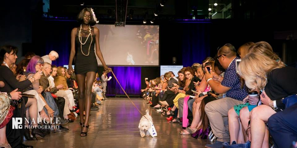 Model and a cute puppy from Rancho Coastal Humane Society walking down the runway on Fashion Week San Diego 2014 Night 2