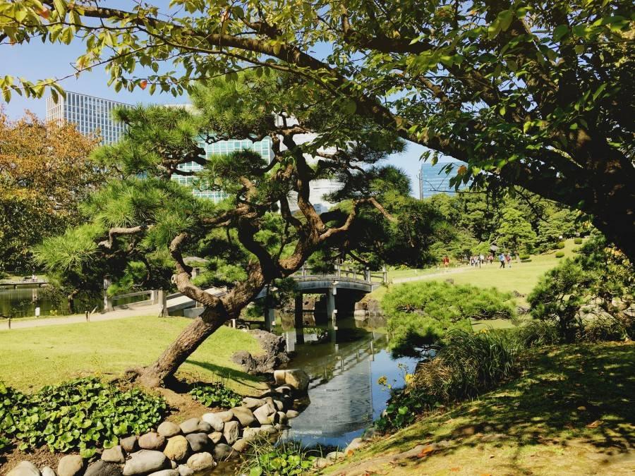 Hamarikyu Gardens 2 | Style with Nihan