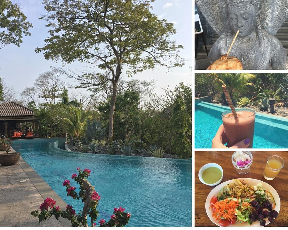 salt water infinity pool in Bodhi Tree Yoga Resort, Nosara Costa Rica