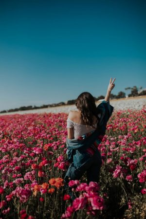 The Most Instagrammable Place San Diego in Spring: The Flower Fields in Carlsbad